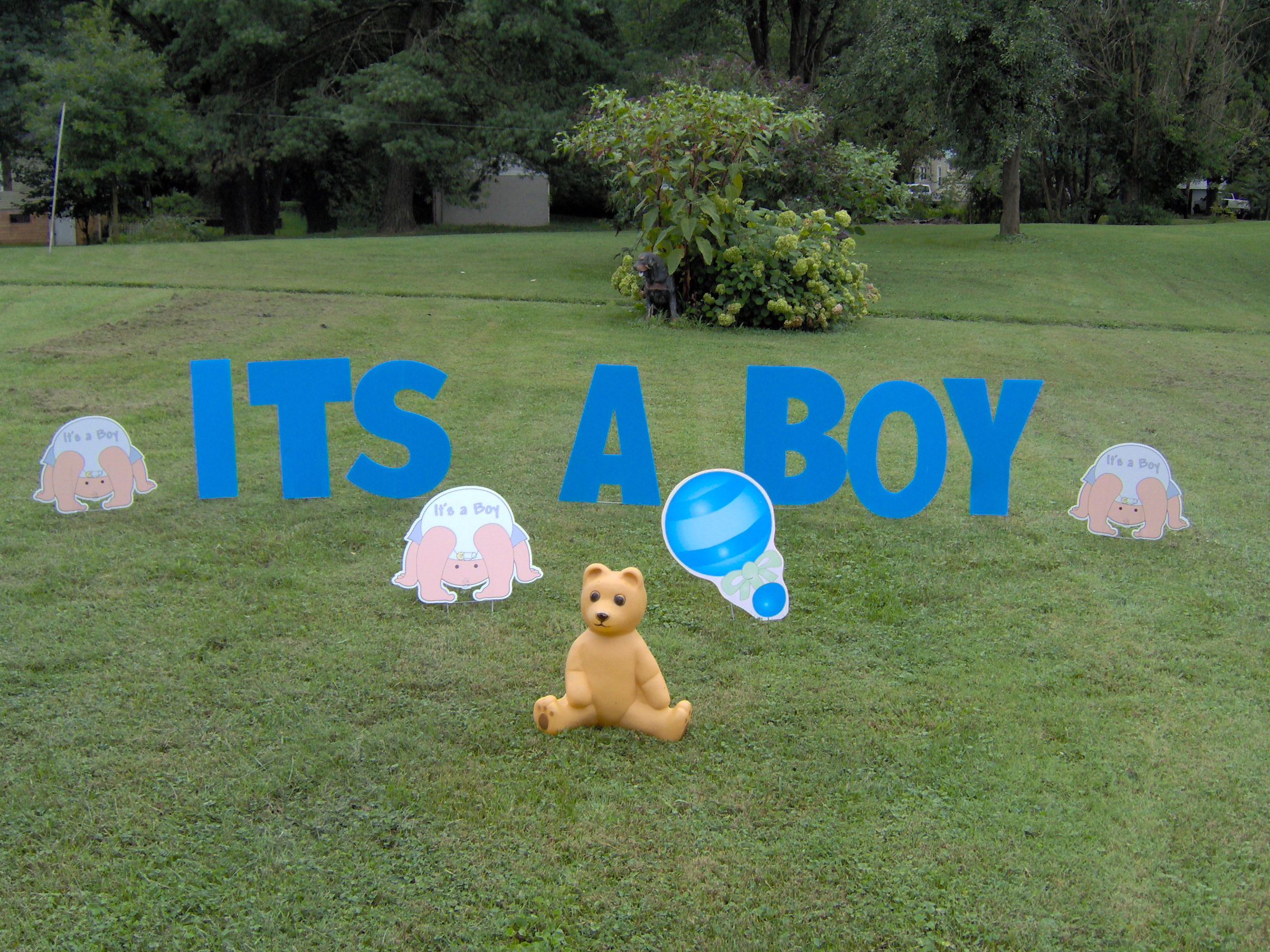 its a boy blue lawn letters 3 diapers 1 rattle